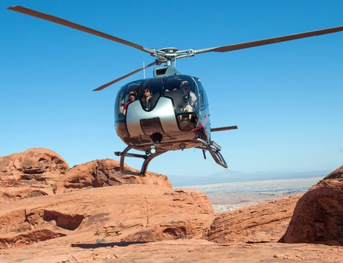 Maverick Helicopters Eliminates Bird Strikes in an Eight Year Test